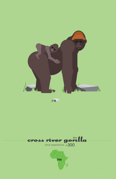 cross_river_gorilla_sd-011-388x600